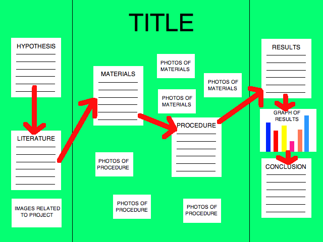 science fair labels templates - tri fold board mrs evans 39 teacher website